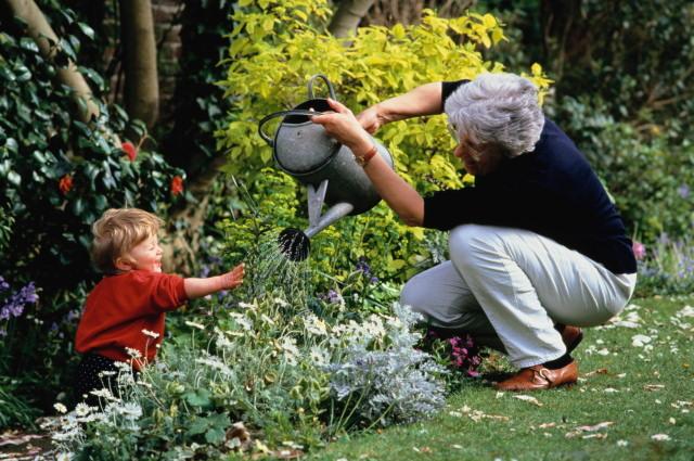 Ошибки при поливе сада
