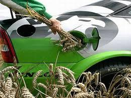 Эксперт: Биотопливо может заменить природный газ