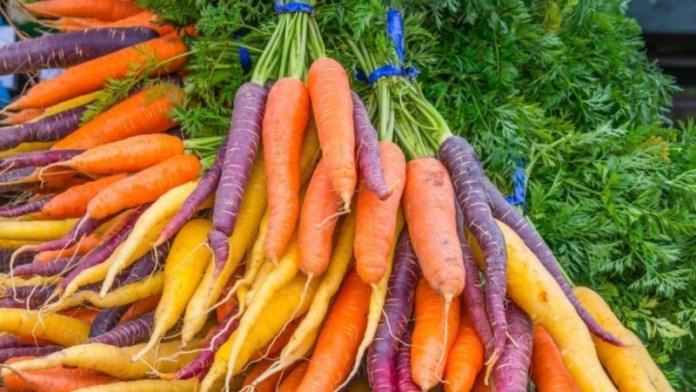 Ученые поделились интересной информацией о моркови