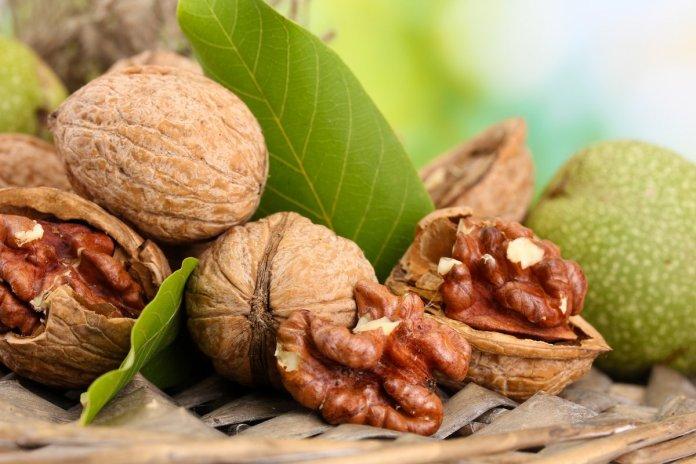 В Украине выведено 4 новых скороплодных сорта грецкого ореха