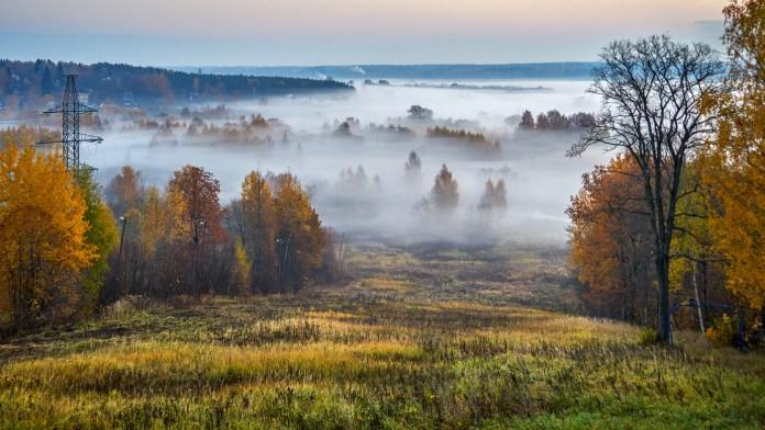 Погода на неділю, 17 жовтня: туман і сонце