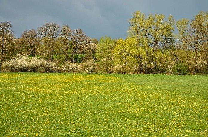 погода апрель