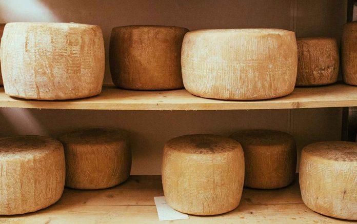 На Прикарпатье будут изготавливать сыр по новой технологии