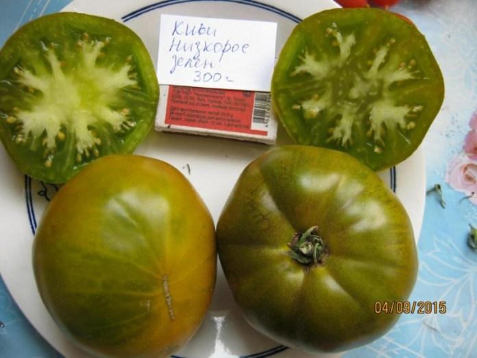 Простой способ заготовки семян томатов