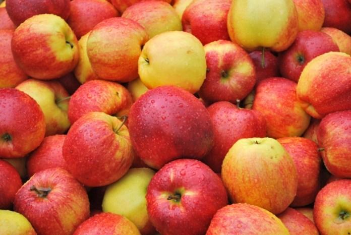 Как получать 45 тонн яблок с одного гектара