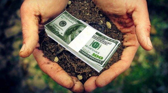 земля цена