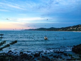 One of the best views in Sayulita from Villa Amor: Hotel Villa Amor