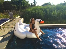 How cute does V look on this swan!