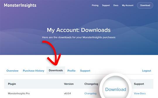 Download Install MonsterInsights
