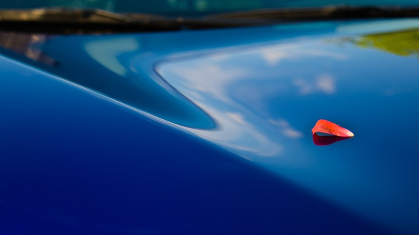 Petal to the Metal by MarkDonnell-