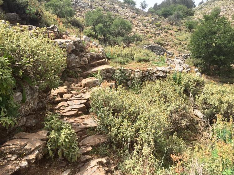 Trasa Heroes Ultra Crete - dużo litych skał, luźnych kamieni i ostrej roślinności. Fot. Viola Domaradzka