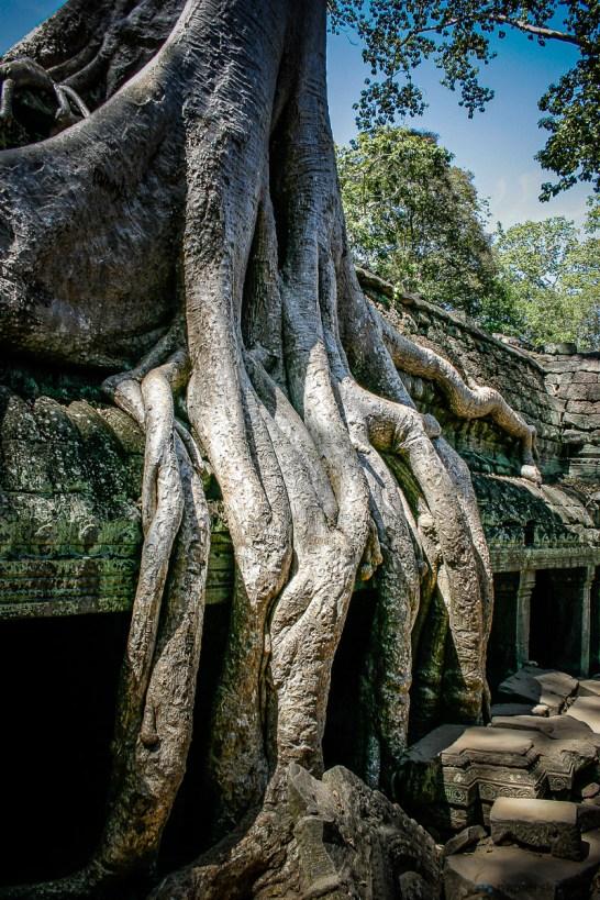 November 2004 Angkor Wat, Siem Reap Province, Cambodia