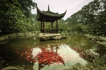 November 2008 The Great Buddha, Leshan, Qingyi river, Sichuan, China