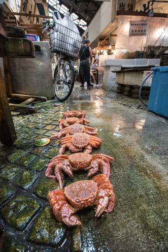 May 2013 Tsukiji Fish Market (築地市場), Tokyo, Japan