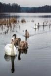 January 2014 Wysokie Brodno Lake, Brodnica, Poland