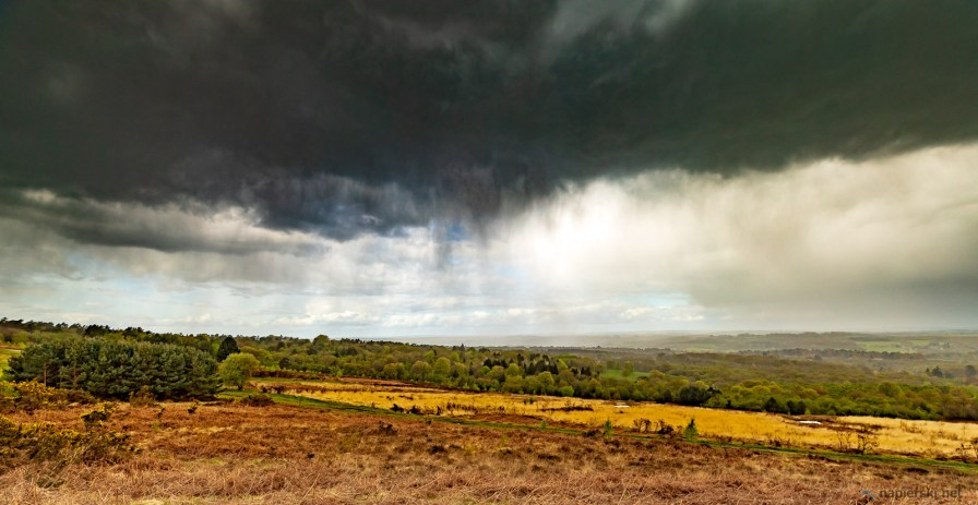 April 2018, Ashdown Forest, Wych Cross, Sussex, UK