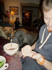 The dogs want the chilli it's so good!