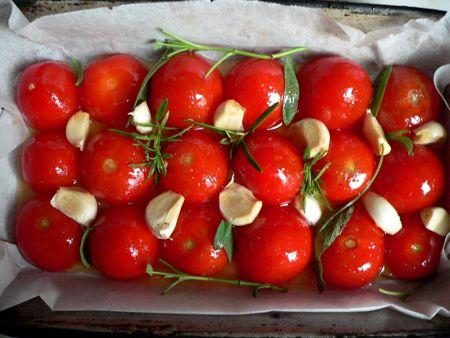 paradajs-friskovec