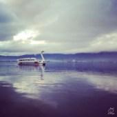 諏訪湖のシンボル的存在、白鳥丸w