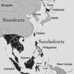 sinodont-sundadont-map-CROP_GRAY_BW