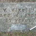 LAKE-VIEW-pauper-grave