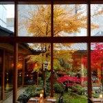 MOMIJI-dining-room-garden