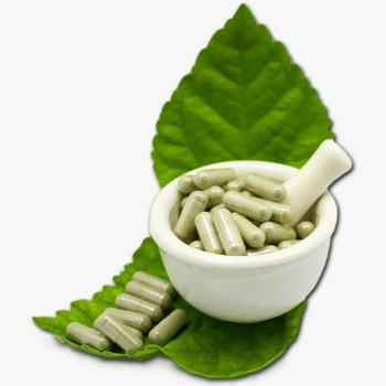 Holistic Herbal Capsules