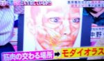 ホンマでっかTV 顔で人生は変わる?顔を美しく錯覚させるを振り返る