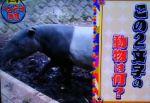 トリニクって何の肉!?を振り返る テーマがヘンテコ動物でヤラセ疑惑