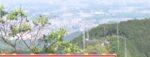ポツンと一軒家を振り返る 埼玉県で見つけた鉄塔と巨大アンテナ
