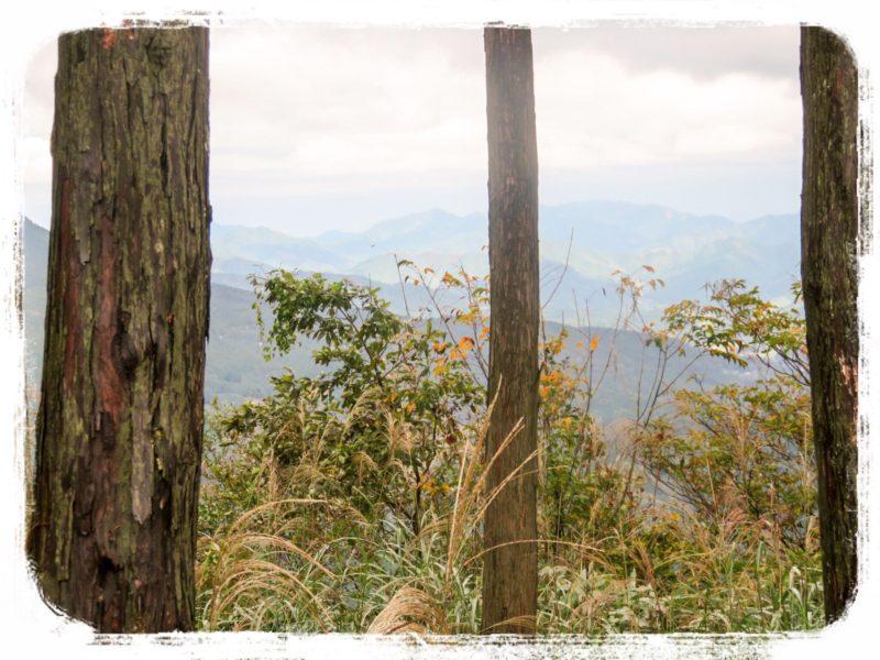 曽爾高原亀山1