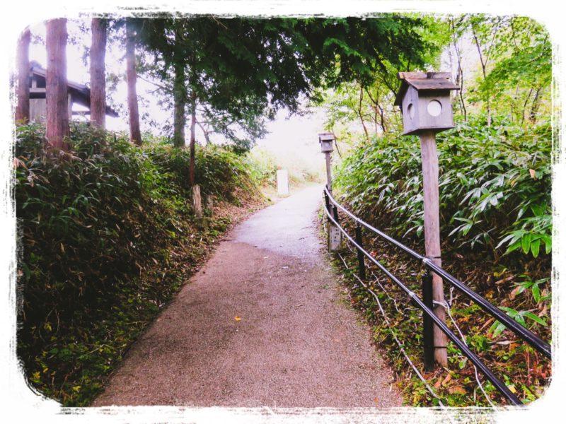 曽爾高原へ向かう道2