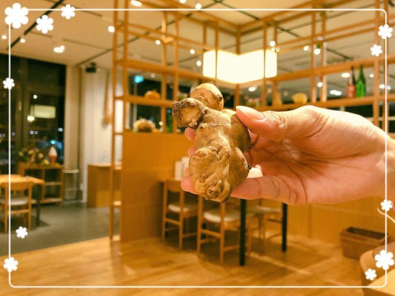 コトコト 菊芋