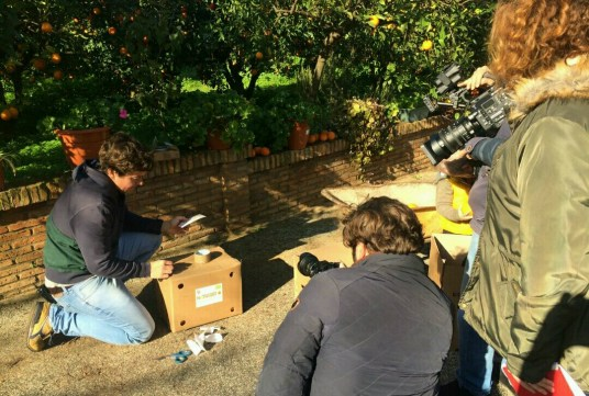 PLAYMEDIA Producciones visita Naranjas Ecológicas Sevilla