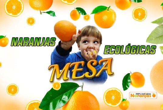 ¡Naranjas Ecológicas de Mesa a la venta!