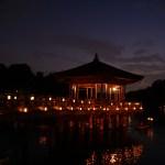 奈良の夏 燈花会