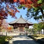 鮮やか興福寺