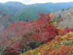 吉野山紅葉