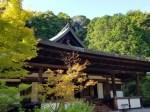 円成寺見どころ