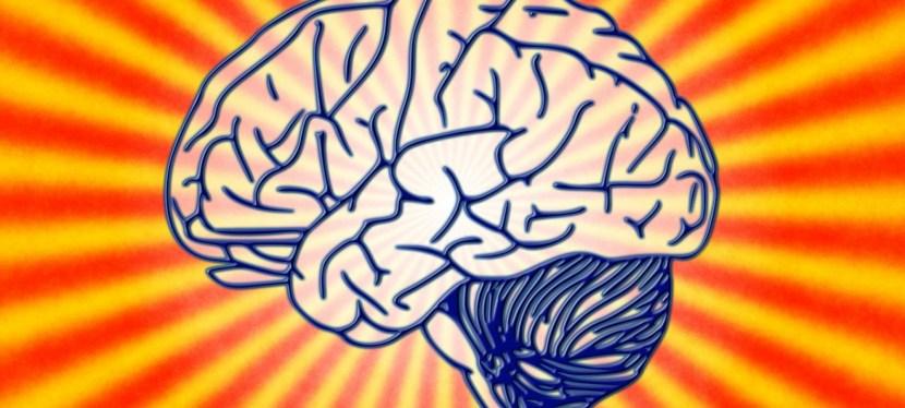 Cómo una Adicción Secuestra el Cerebro