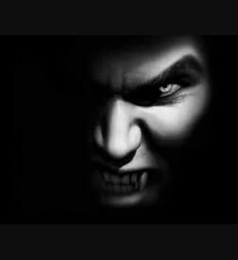 Goed leven is de beste wraak narcisme.blog VKoN Geen Contact regel. Transformatie na misbruik door een narcist.