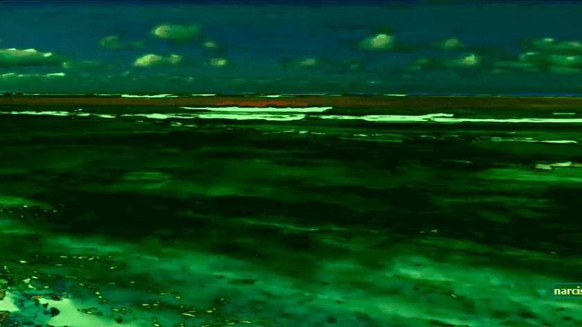 de zee voor narcisme.blog