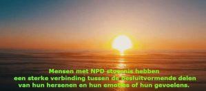 narcisme.blog mensen met nPD stoornis hebben een sterke verbinding tussen de besluitvormende delen van hun hersenen