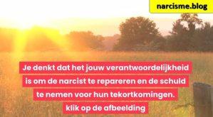 zonlicht op zonnebloemenveld voor narcisme.blog