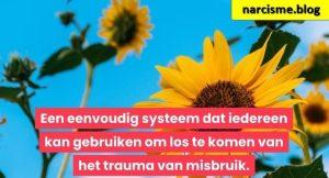 zonnebloemen voor narcisme.blog