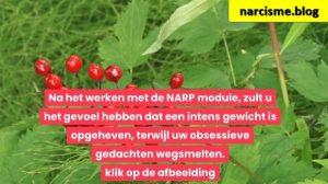 vruchten voor narcisme.blog
