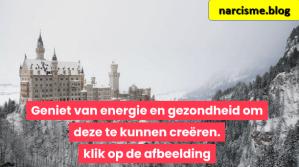 kasteel in de sneeuw voor narcisme.blog