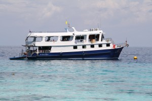 Diving Thailand - Similian Liveaboard