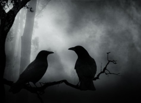 Image result for dark crows