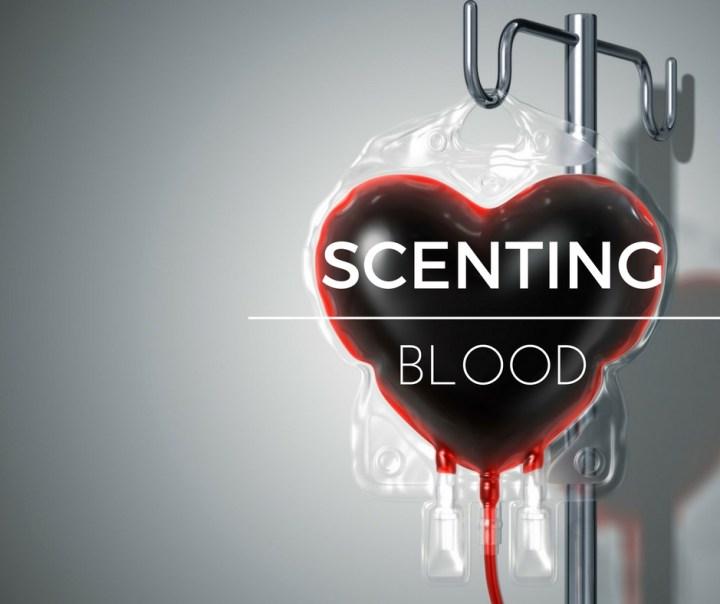 scenting